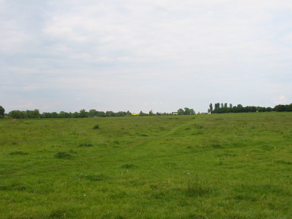 Image shows Bury Common which has been protected by the Neighbourhood Plan.